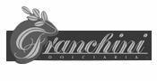 sponsor-franchini.jpg